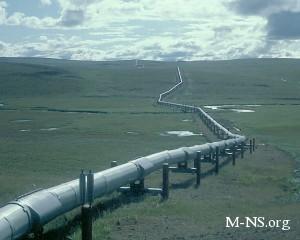 Руководство Северного потока изучает возможности для расширения