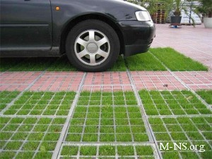 В Киеве появятся экологические парковки