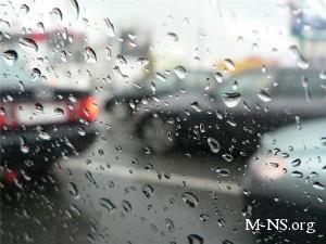 В западных областях Украины ожидаются паводки из-за сильных дождей
