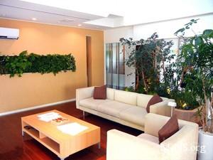 Экология вашего дома - как улучшить свое жилье