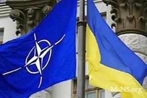 Бренгельманн: Украина является ключевым партнером НАТО