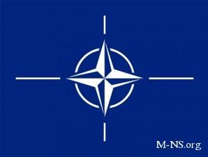 НАТО ждет от Украины честных выборов