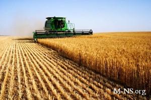 Украина способна увеличить урожайность большинства культур на 50%