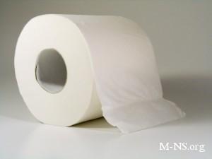 Активисты забросали Раду туалетной бумагой