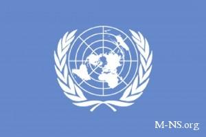 ООН спросит у украинцев, насколько хорошо в их стране соблюдаются права человека