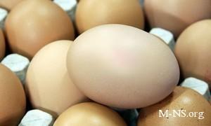 Украинские магазины завышают цены на куриные яйца