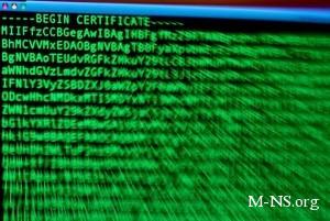 МВД: Если сайт от DDoS-атаки не пострадал, то состава приступления нет