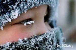 Из-за морозов на Луганщине приостановлены занятия в ряде школ
